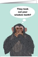 pug teeth extraction get well soon cards for wisdom teeth removal from greeting card universe