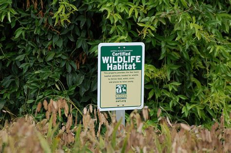 certified backyard habitat certified wildlife habitat flickr photo sharing