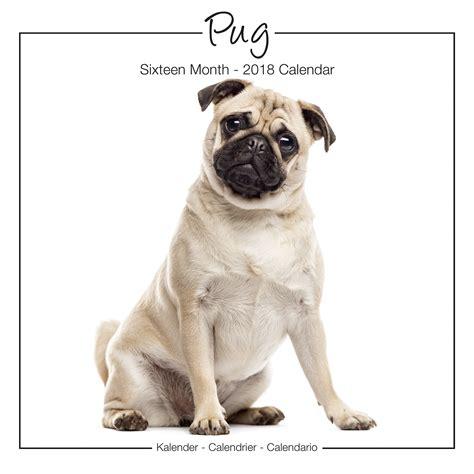 pug price range pug studio range calendar 2018 pet prints inc