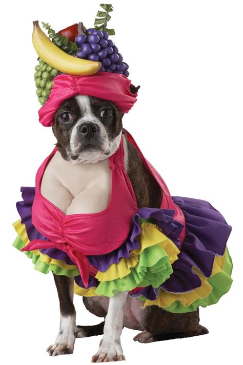 puppy costume cha cha cha costume costume craze