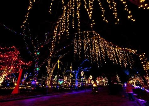 boise botanical winter lights cody s appliance repair