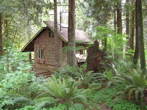Washington Cabins by Handbuilt Cabin In Washington State Cozy Log Cabins