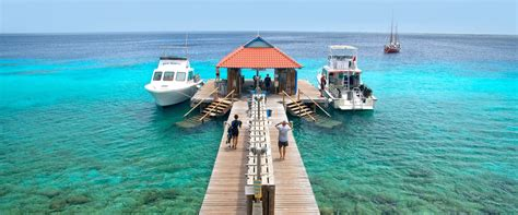 bonaire dive resorts bonaire dive resorts buddy dive resort in bonaire
