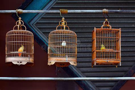 gabbie antiche per uccelli gabbie per uccelli di legno antiche fotografia stock