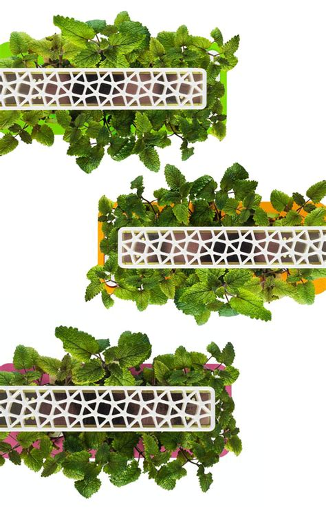 the smart garden a grown up smart countertop herb garden