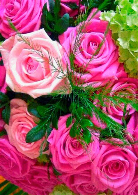 imagenes sorprendentes de flores gifs hermosos flores encontradas en la web