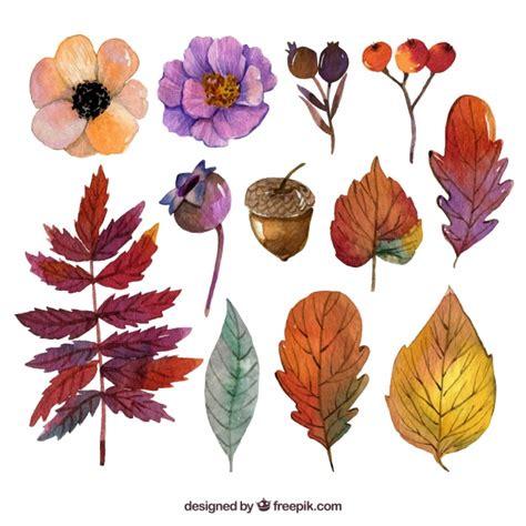 fiori e foglie raccolta di fiori e foglie di acquerello autunnali