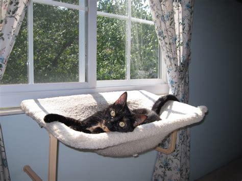 Window Cat Hammock allegra s world new window perch