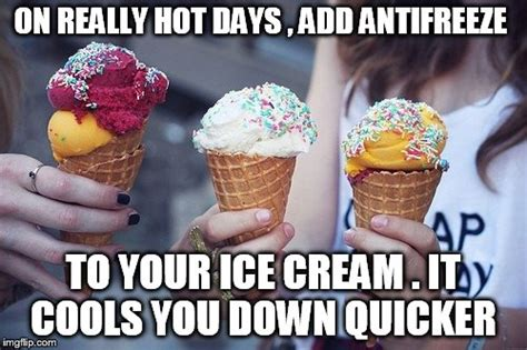 hot summer day funny images funny pictures hot summer days impremedia net