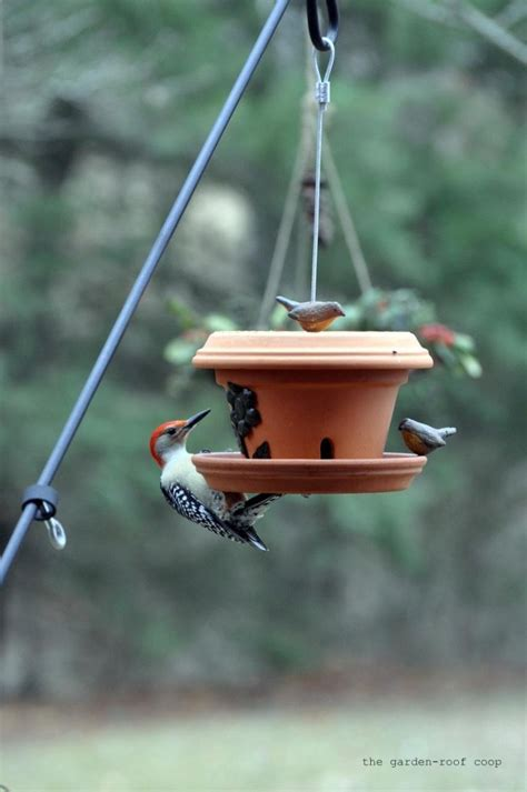 rebecca s bird gardens blog diy flowerpot bird feeder
