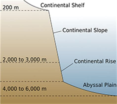 Continental Shelf Slope Rise by Floor Complete Study Notes Oliveboard