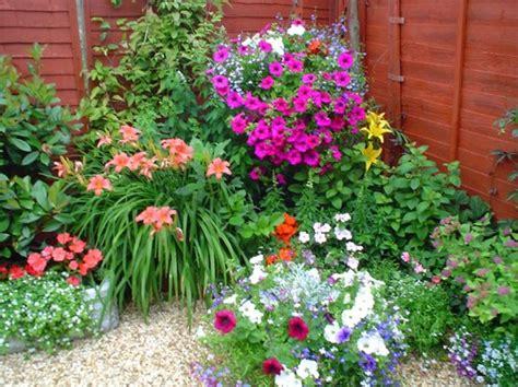 imagenes de jardines frontales pequeños flores para jardim externo com sol decorando casas