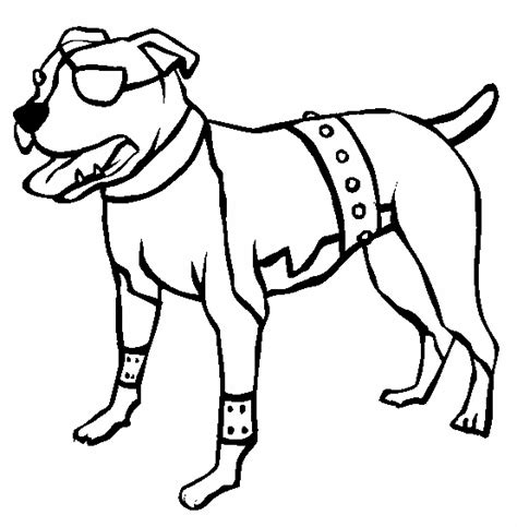 coloring pages of pitbull dogs pitbull with one eye coloring page animal ready to