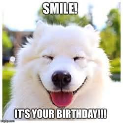 Birthday Meme Dog - image tagged in smile birthday happy birthday dogs