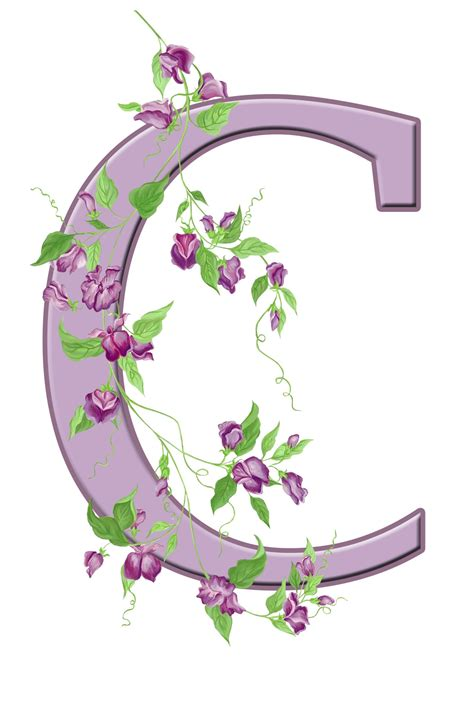 letter c floral initial free stock photo domain