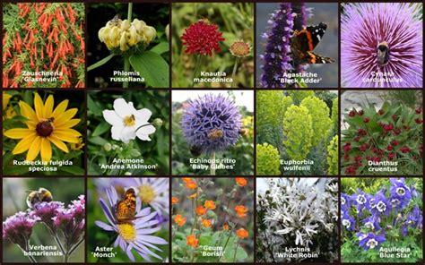 Bee Garden Flowers Bee Friendly Gardening On Bees Flora And Garden Plants