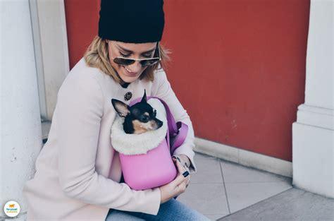 giochi di portare a spasso i cani a spasso con la borsa per cani with me winter ferplast