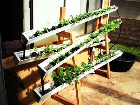 aquaponic vertical garden a scam proof guide to