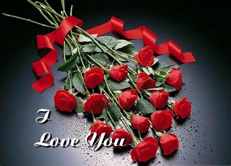 amazing red rose love quotes godfather style