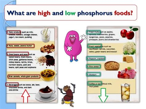 low phosphorus food nutrition in renal patient
