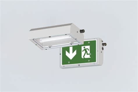 Lu Emergency Fitting compact sheet steel light fitting 252442