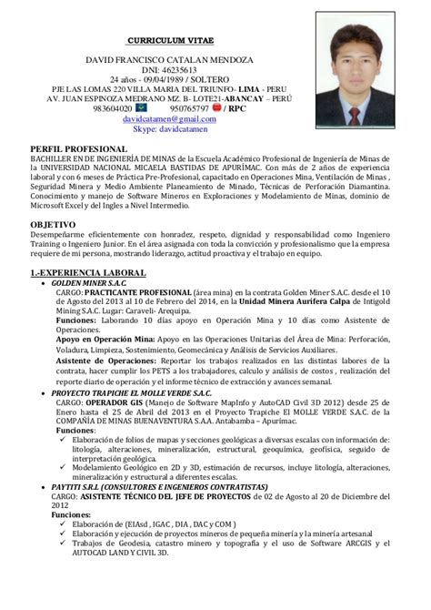 Modelo Curriculum Ingeniero Civil Cv David Catalan Mendoza 2014 B