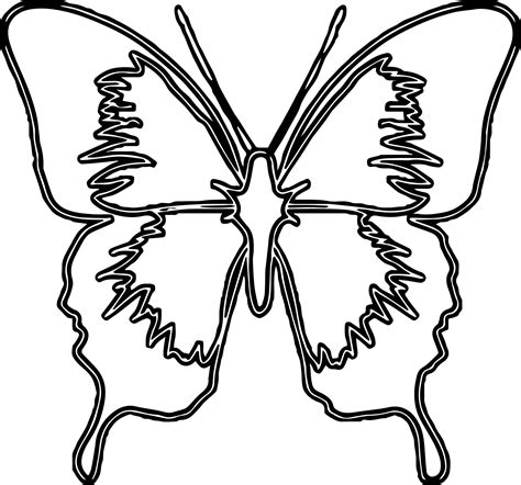 blue butterfly medium coloring page wecoloringpage