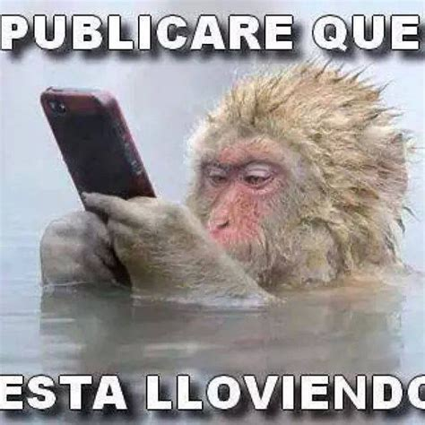 Imagenes Comicas Memes | imagenes comicas de wereverwero imagenes para facebook