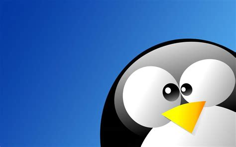 L Linux by Tldr Pages A Simplified Alternative To Unix Linux Pages