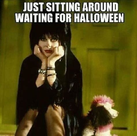 Halloween Meme Funny - top 35 halloween funny memes quotes and humor