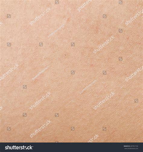human skin texture stock photo image 76786839 human skin texture stock photo 287957150