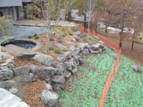 hill landscaping redbud design