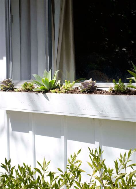 Low Maintenance Windows Decor The Best Plants For A Low Maintenance Window Box Window Boxes Sun And The O Jays