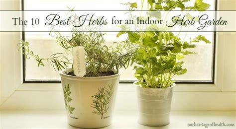 best indoor herb garden 10 best herbs for an indoor herb garden our heritage of