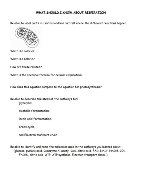 Respiration Worksheet by Comparing Photosynthesis And Cellular Respiration
