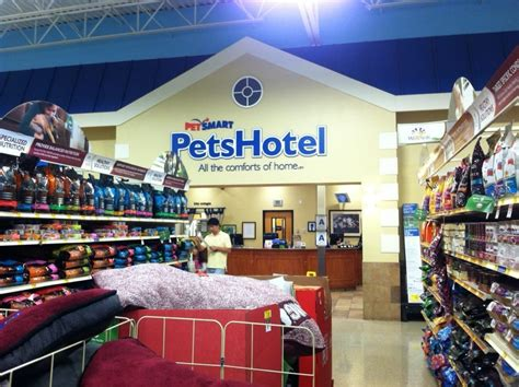 petco daycare inside petsmart lies a kennel and day care yelp