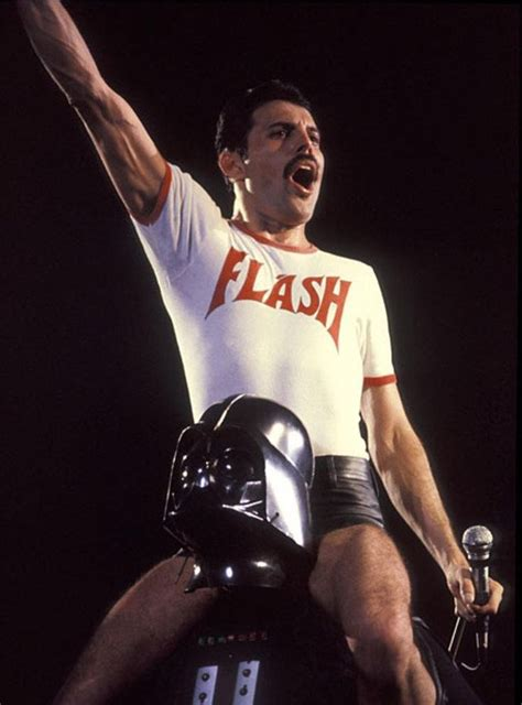 freddie mercury mini biography 130 best images about spirit of the rebel on pinterest