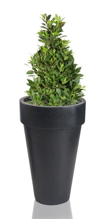 black montroe polystone planter h48cm 163 29 99