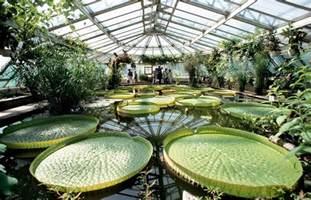 der botanische garten berlin der botanische garten droht finanziell