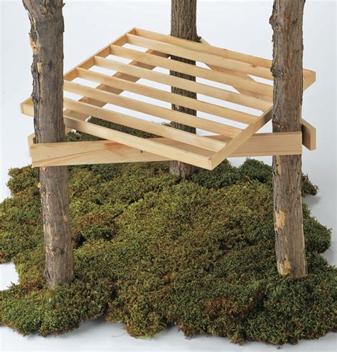 building a tree house everything you need to know treehouse ideas on pinterest treehouse foundation and beams