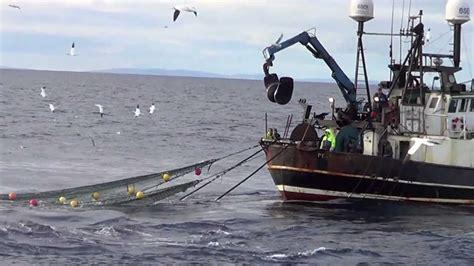 boats net shipping fishing vessel lapwing pd972 hauling his net youtube
