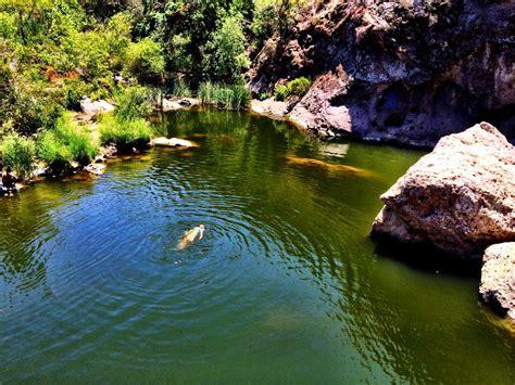 malibu lagoon state park malibu creek state park los angeles county california
