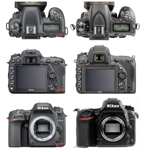 of nikon more pictures of the nikon d7500 dslr leaked
