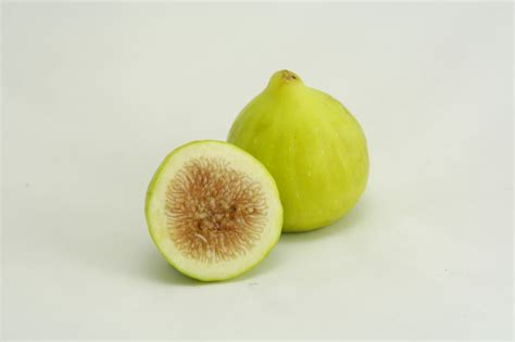 Best Color Interior by Figs 171 Search Results 171 Earl S Organic Produce