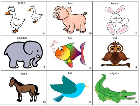 animal pictures for toddlers animals page 2