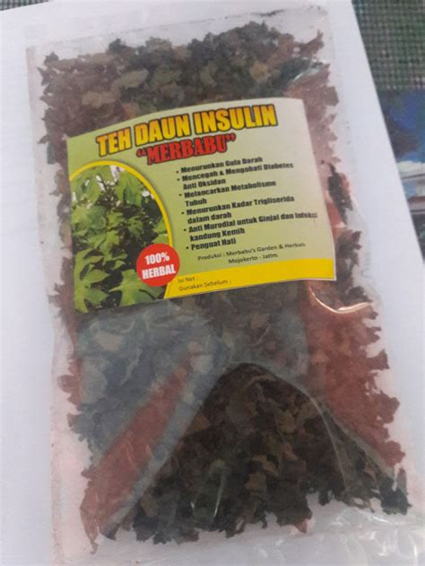Teh Daun Insulin jual obat herbal daun insulin kering