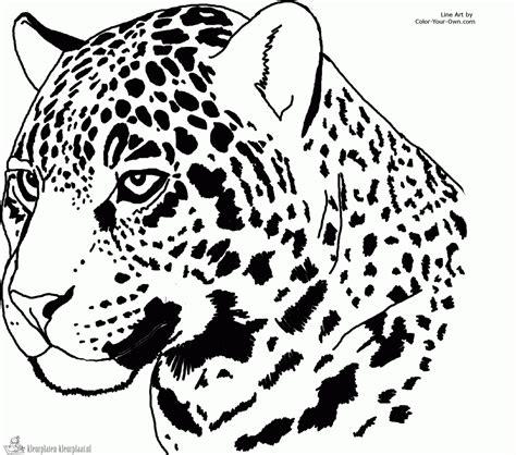 coloring pages jaguar animal geography blog jaguar coloring pages