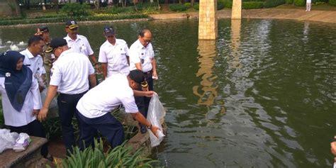 Bibit Ikan Nila Di Jakarta berita indonesia raya 10 000 ikan nila ditebar di taman
