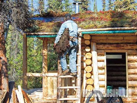 trick and tips to build your own cabin cheap plans all 18 tips to building your own low cost log cabin