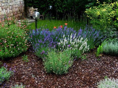 corteccia da giardino giardino con corteccia di pino giardino con corteccia di